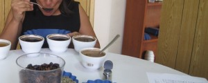 Ramona demonstrating the coffee cupping and quality tasting process at the Fedecares Coffee Cooperative's National Offices