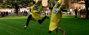 MC-Bananas-300x224