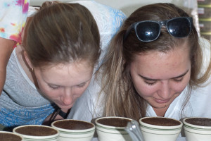 Ashley and Taylor Cupping
