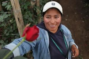 Agrogana: Cotopaxi, Ecuador