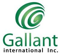 Gallant International