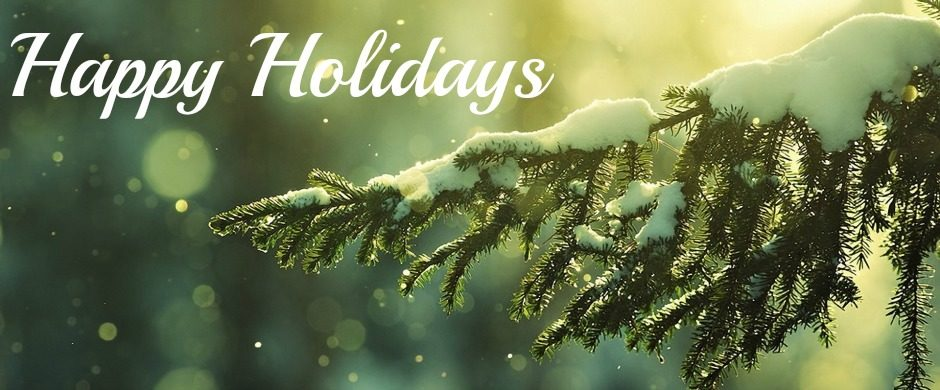 blog-banner-ft-holidays-2016