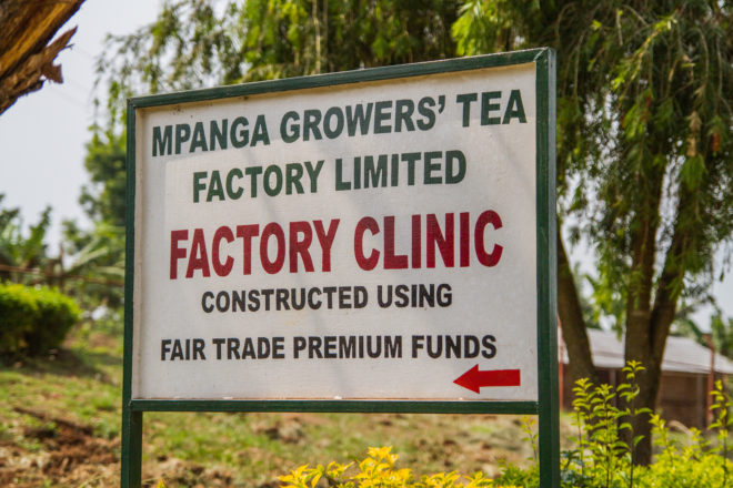 Fair Trade Certified Tea, Mpanga Growers Tea Factory